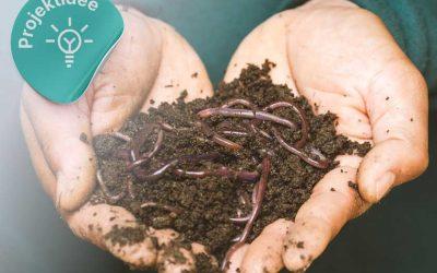 Workshop: Eigenbau von Wurmkisten